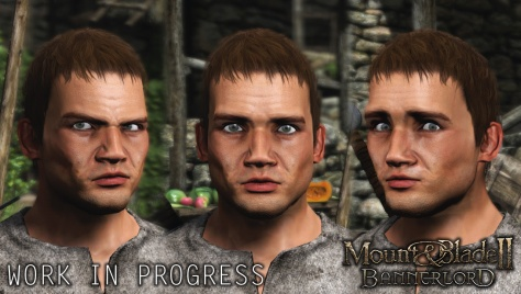 mount-and-blade-2-facial-wip